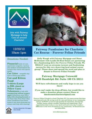 forever feline friends fundraiser